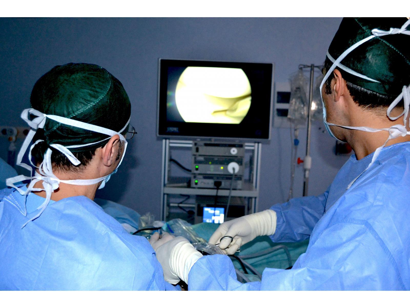 Spitalul Monza - Menischio_1.JPG