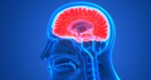 Ce putem sti despre disautonomie?